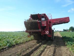 Matériel et réalisation - Récolteuse de pommes de terre sur site